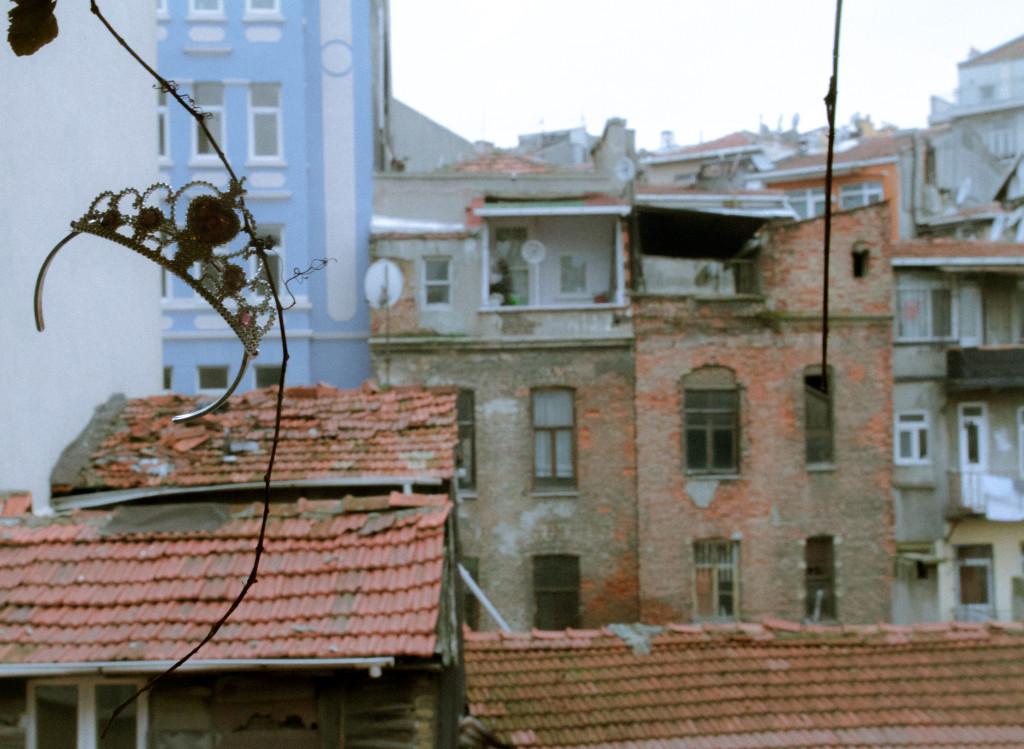 Leman S Darıcıoğlu_Görsel